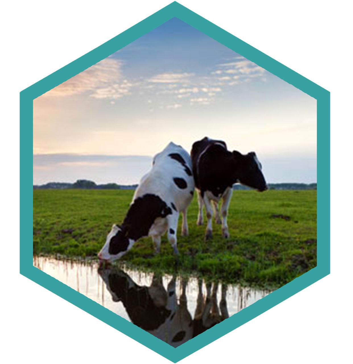 Dairy - Charm Sciences